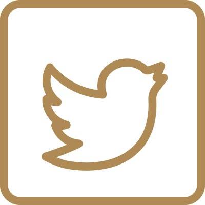 Twitter advokat